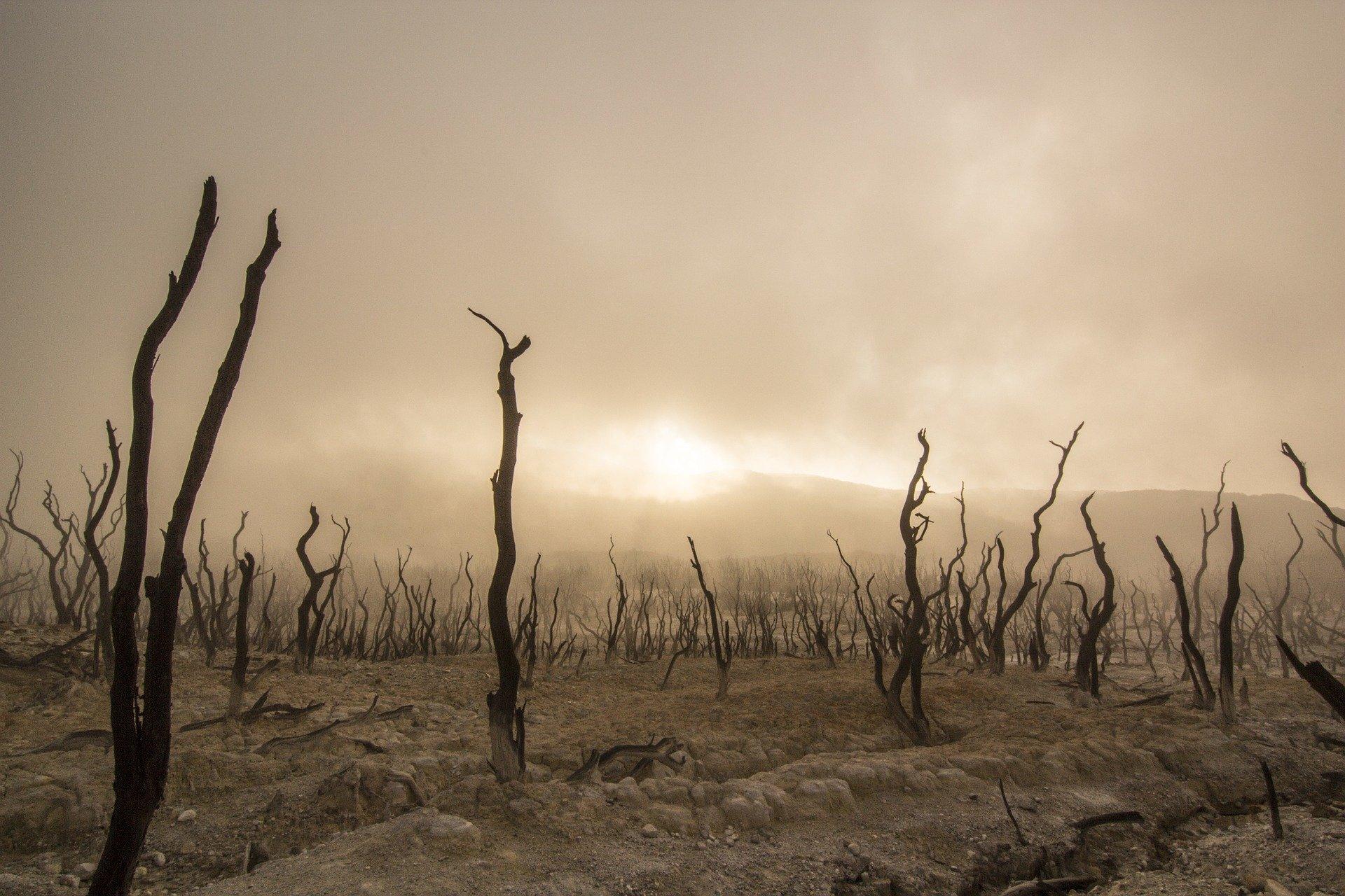 40 ans de climato-scepticisme