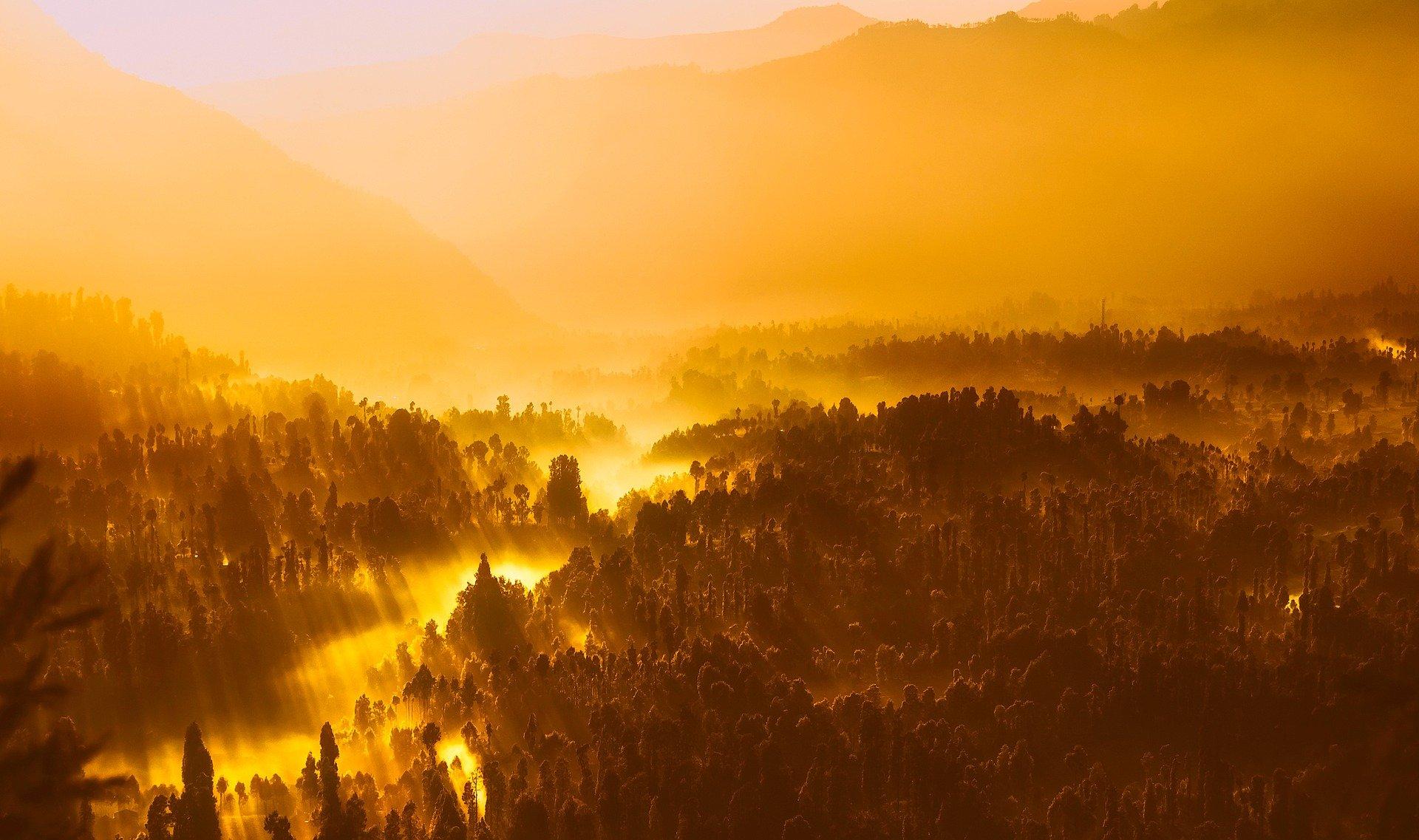 La planète toujours vers un réchauffement de 3 degrés, malgré la pandémie selon l'ONU