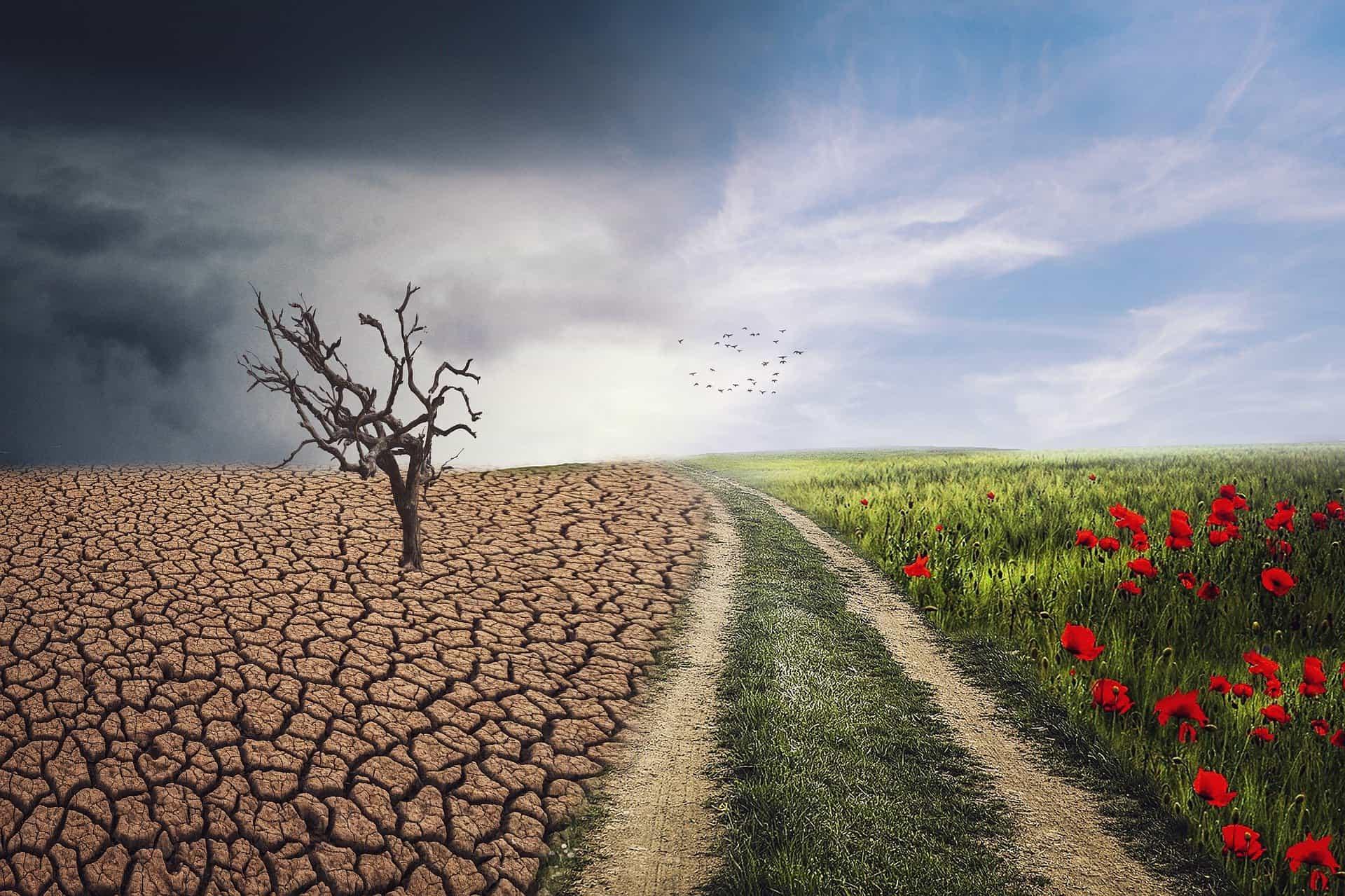 « Le train du climat » Michel Serres